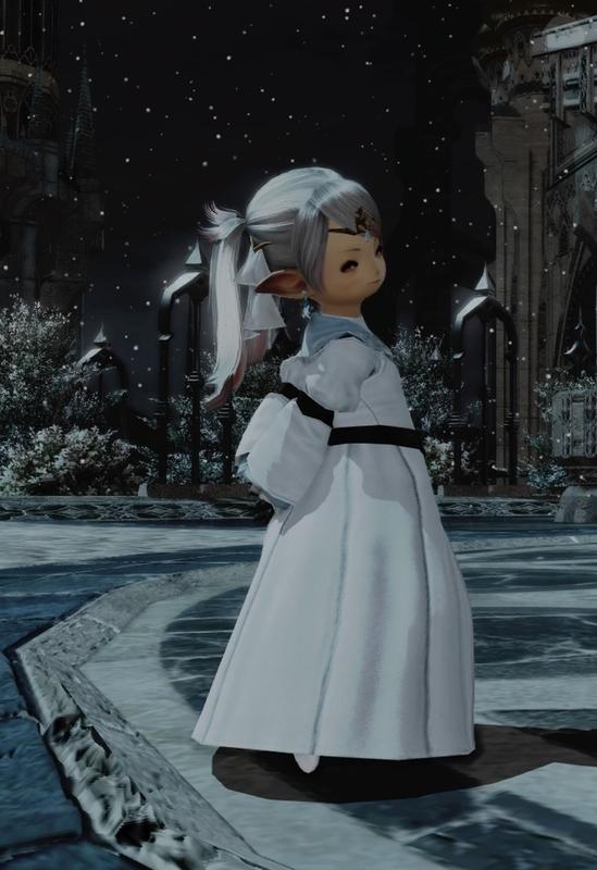 冬用ドレスミラプリ