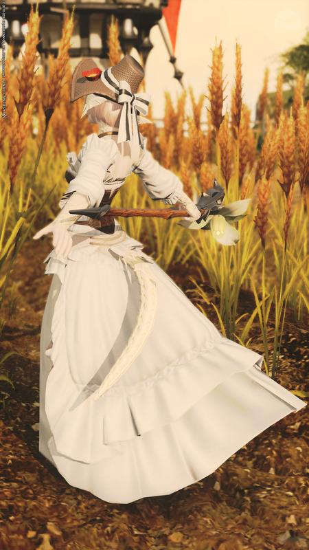 麦畑のお嬢さん