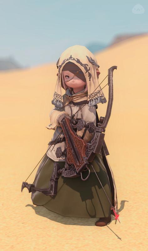 砂漠の追跡者