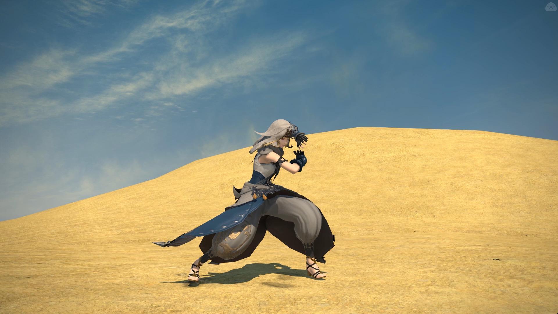 砂漠の拳士