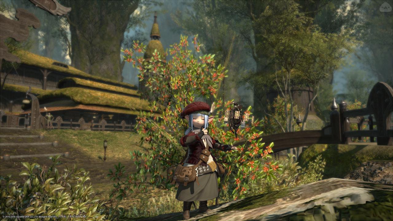 秋の占ちゃん