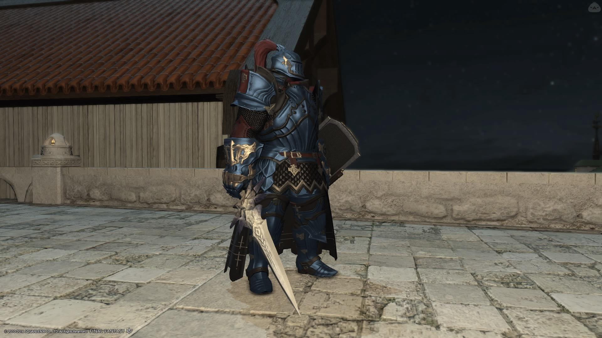 蒼天の騎士