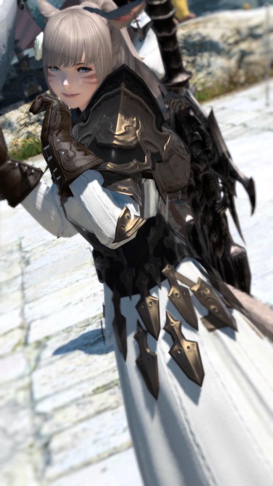 姫騎士一式