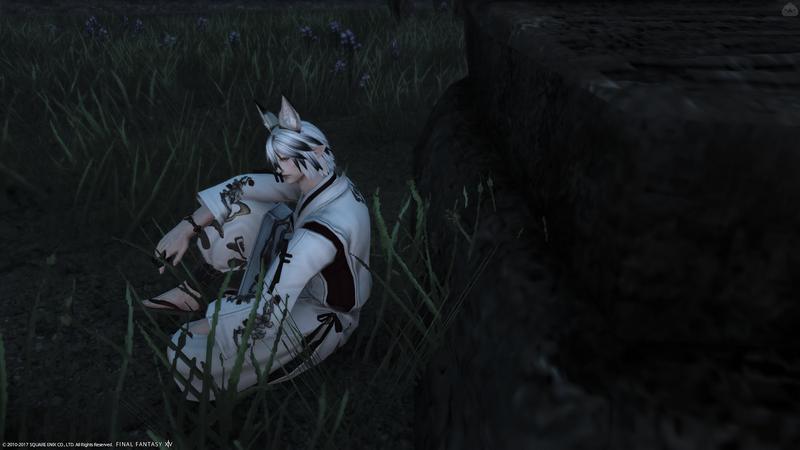 妖狐系エレゼン