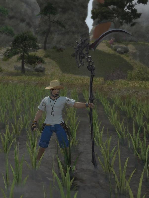 今日も稲刈り