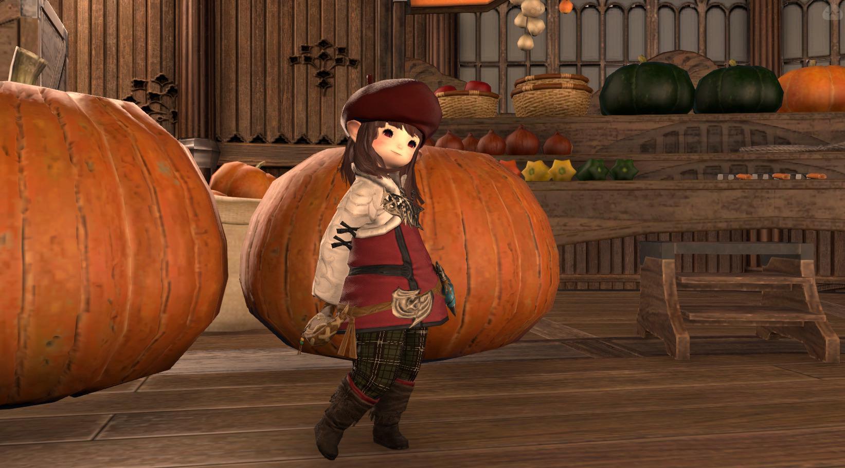 秋こーで!