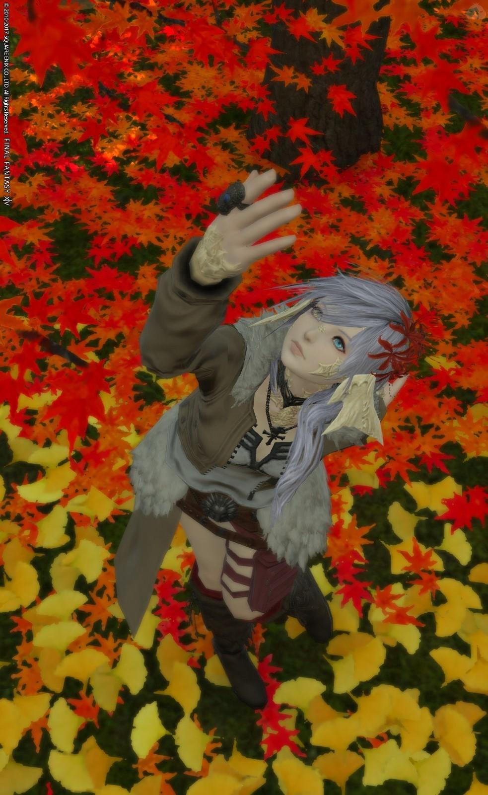 紅葉と秋服