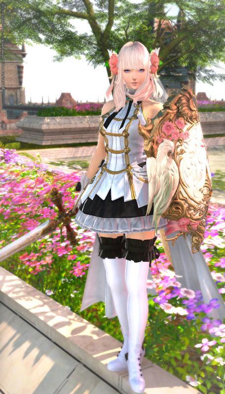念願の姫騎士コーデ!