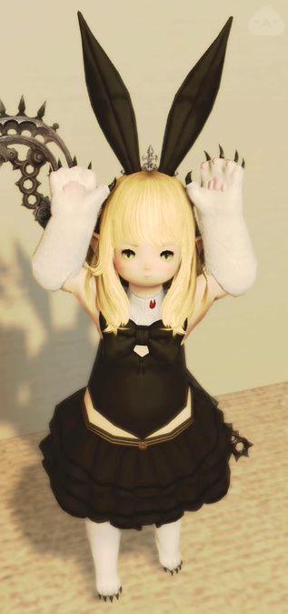 黒ウサギ♪