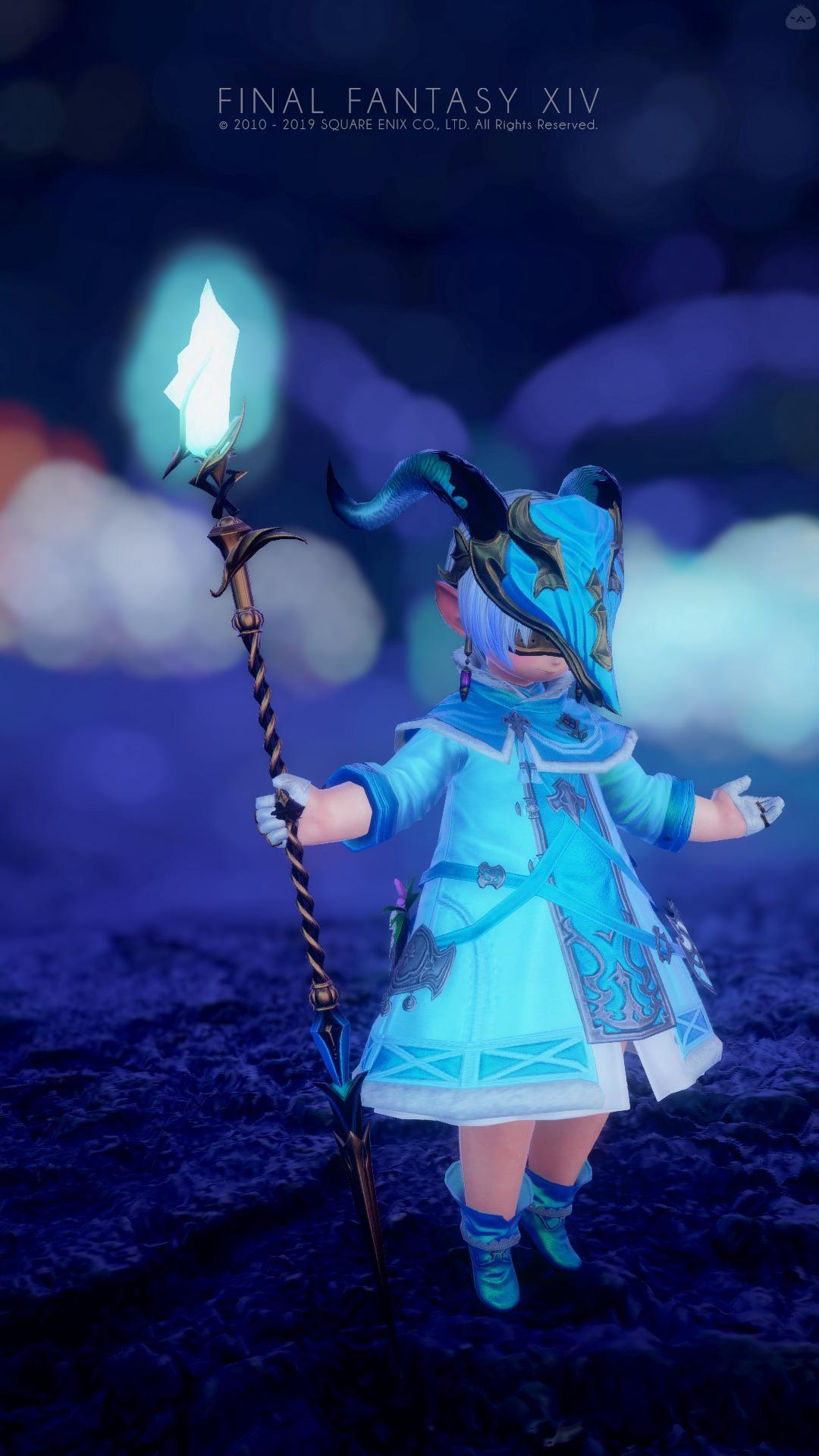 blue healer