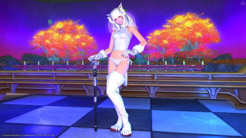 白猫の魔法使い