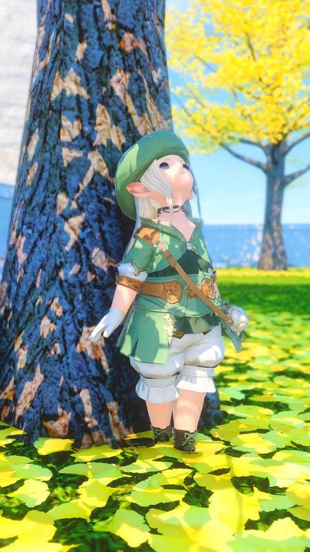 緑の案内人