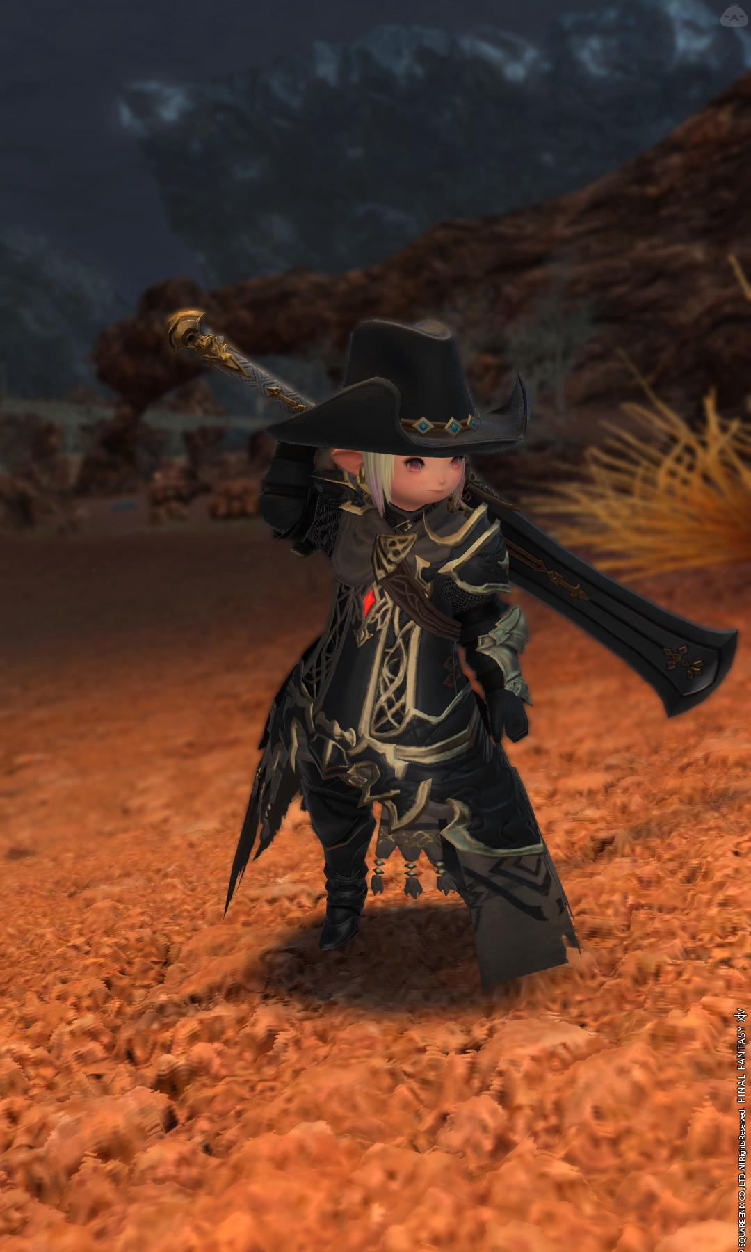 流浪の漆黒騎士