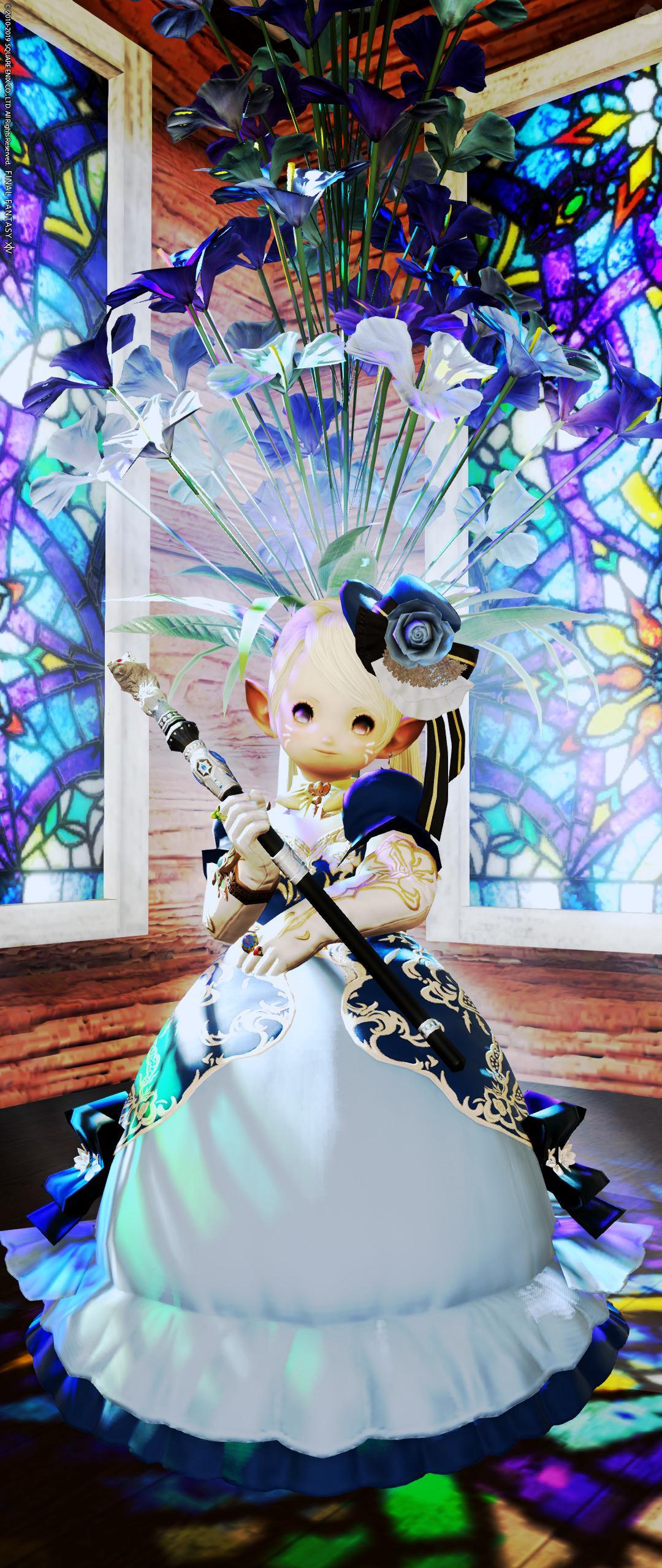 ちびっこ青姫