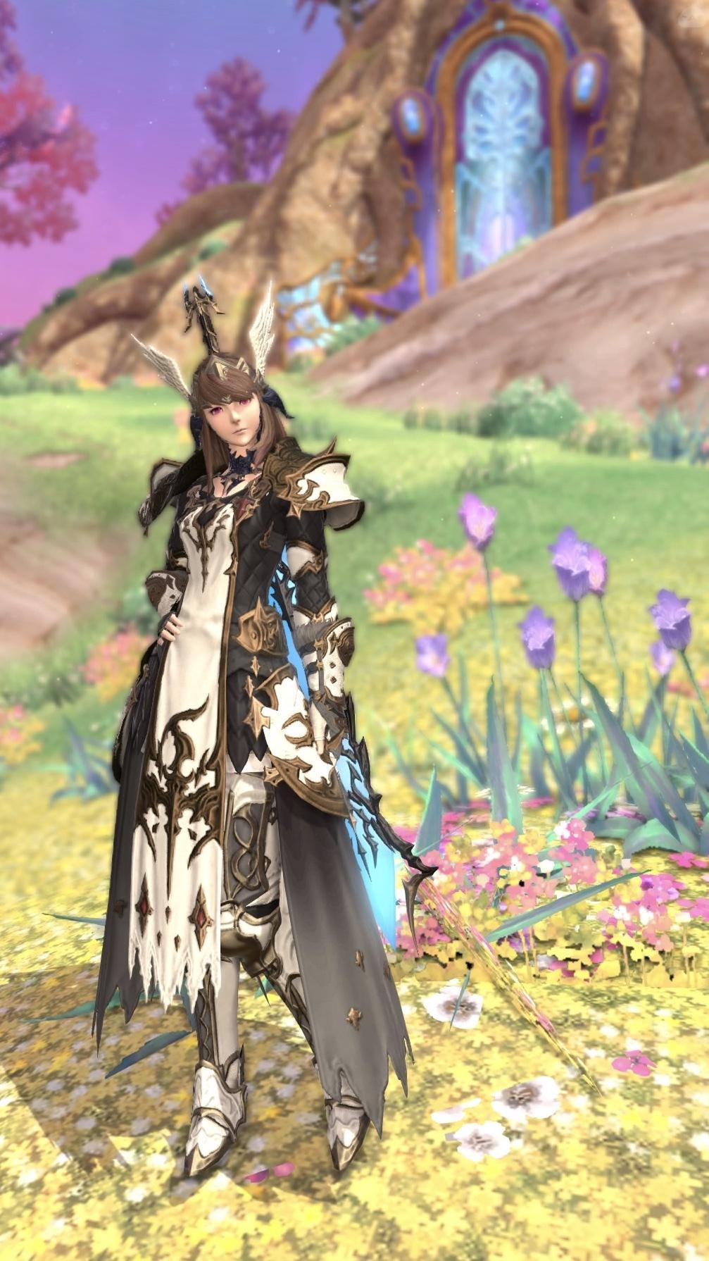 幻想の騎士
