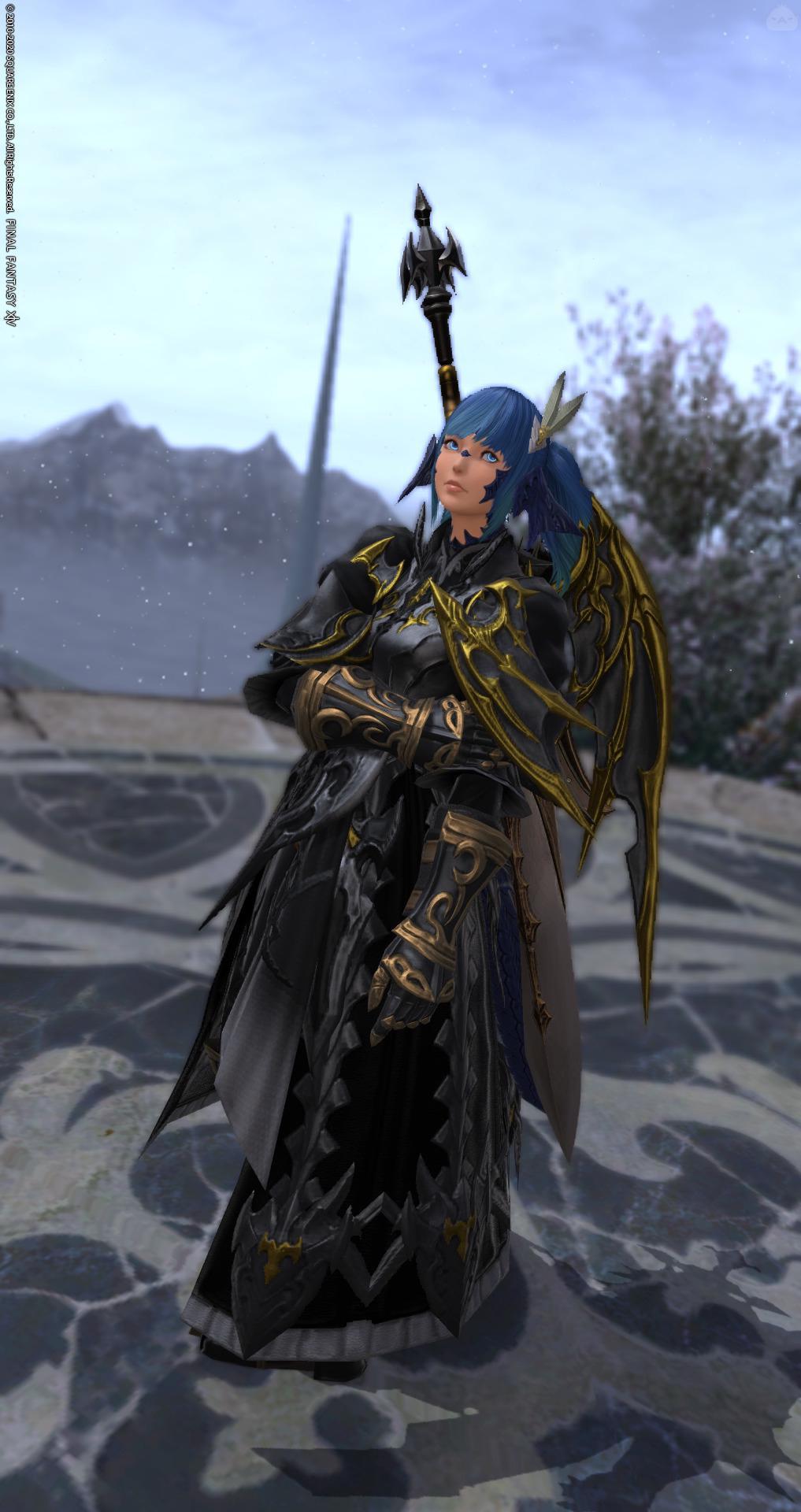 暗黒龍騎士。
