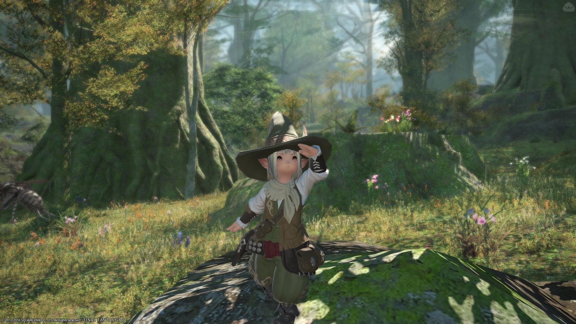 森の小さな冒険者実は・・・