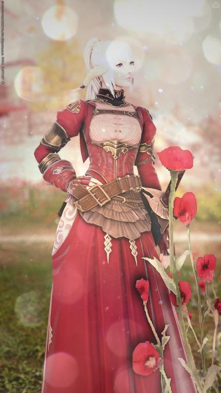 薔薇色の武士