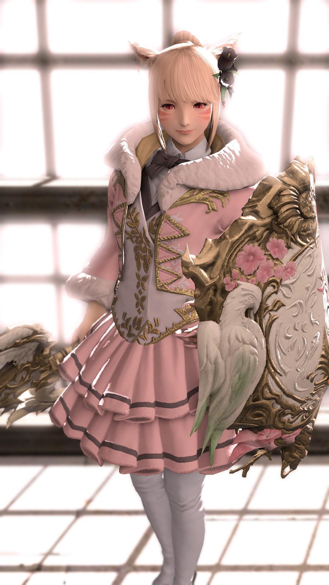 姫ちゃん装備