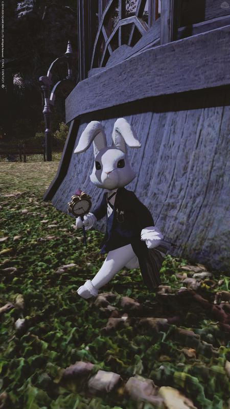 アリス風ウサギ