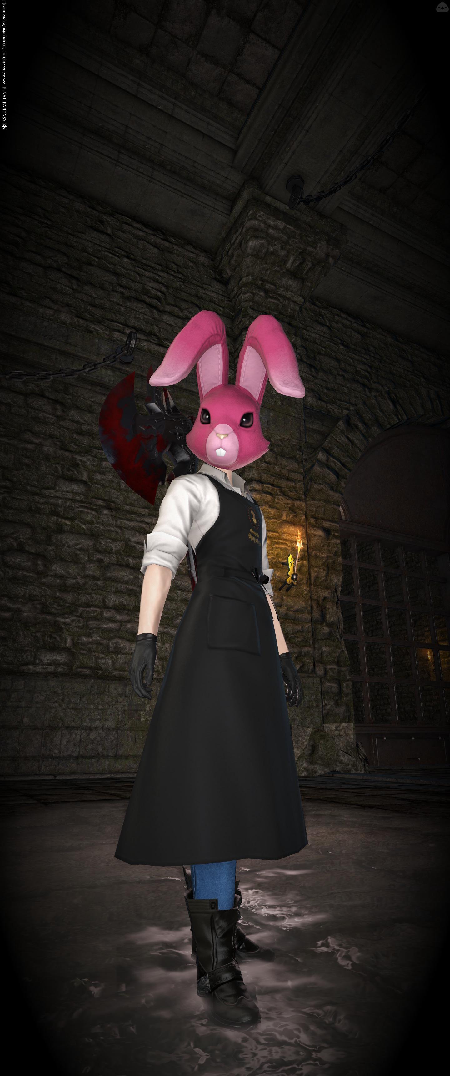 俺が知ってるウサギはこうだった