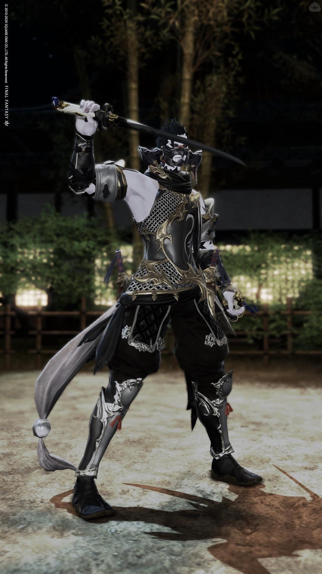 忍者アイディアル胴
