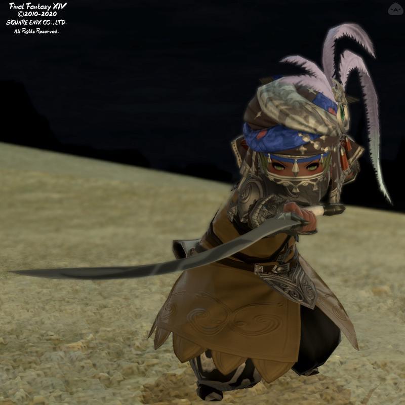 砂漠の剣士