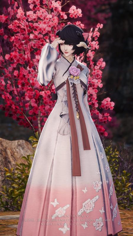 『ネオ』 梅の花