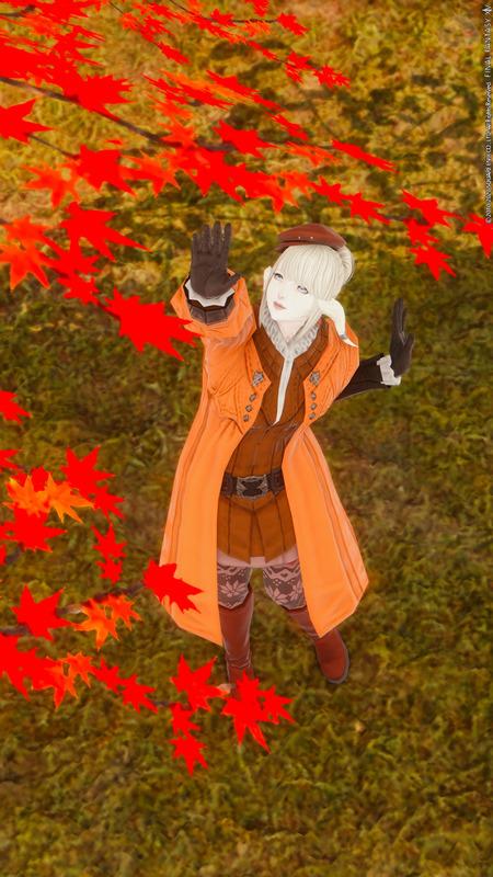 秋の深まりとともに