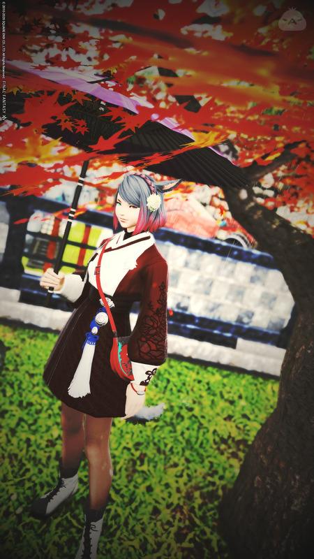 秋雨の紅葉狩り
